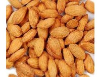 Apricot Kernel Extract